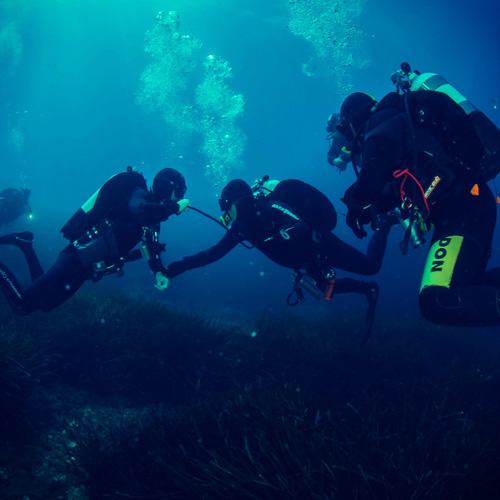 Plongee-sous-marine-divin-giens-porquerolles-encadree