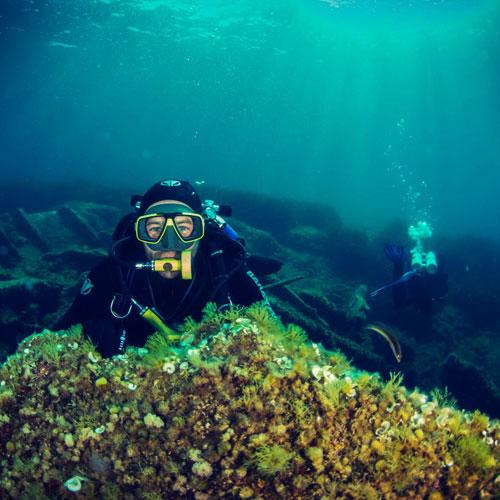 Plongeur-Epave-iles-d-or-hyeres
