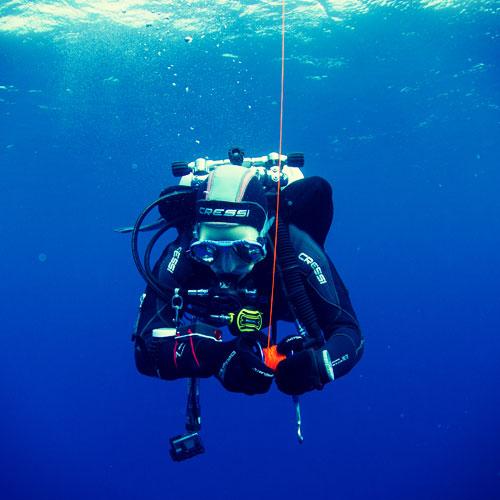 Plongeur-porquerolles