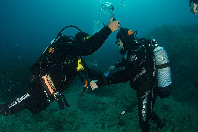 Le brevet de plongeur niveau 1