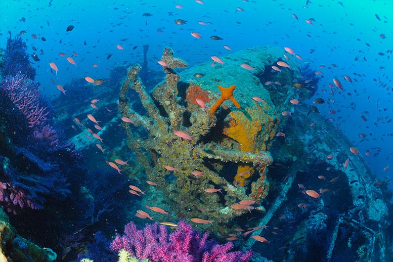 Plongée à Port-Cros